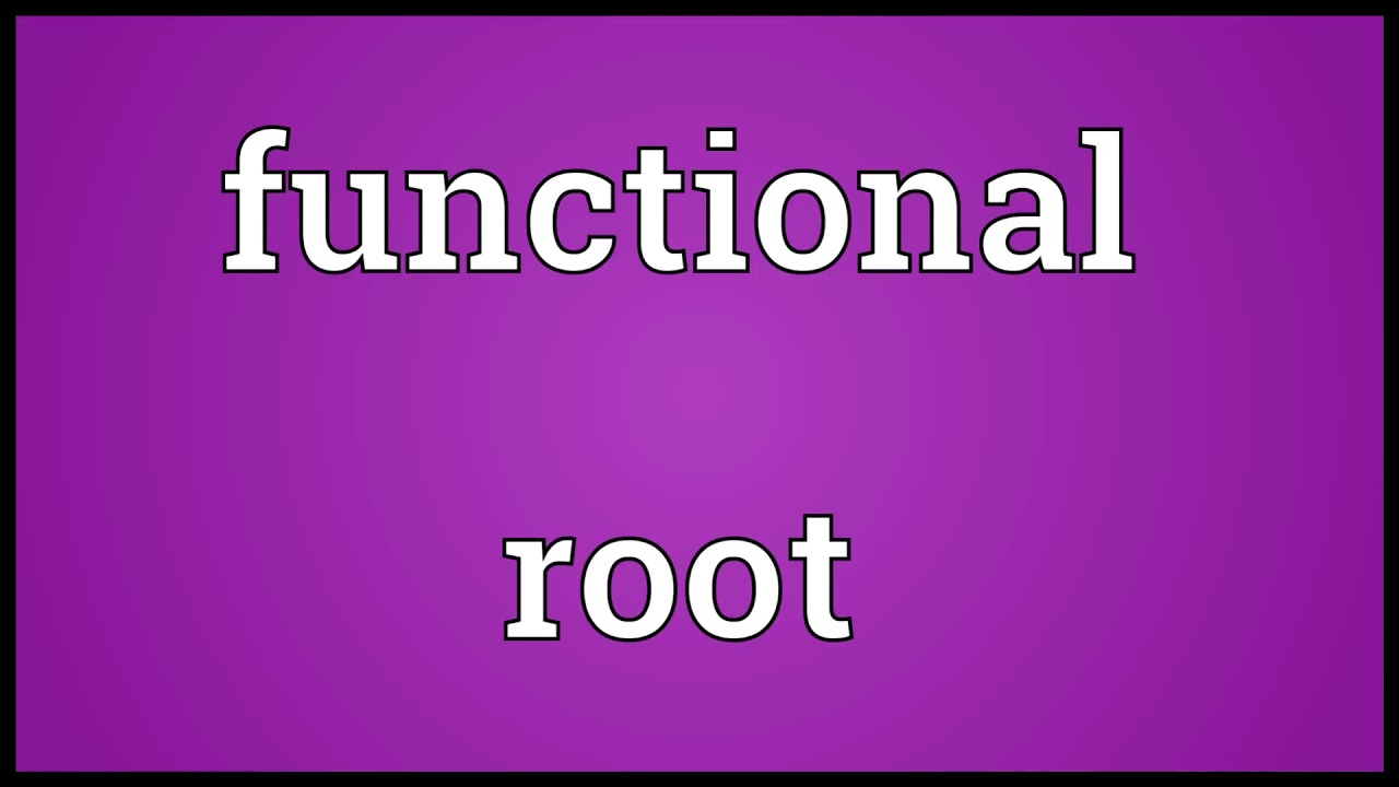 Functional root Meaning - YouTube