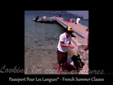 Learn French in Cannes, French Riviera