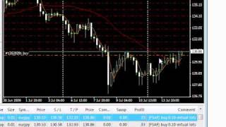 Forex Set and Forget: Protection from Losses