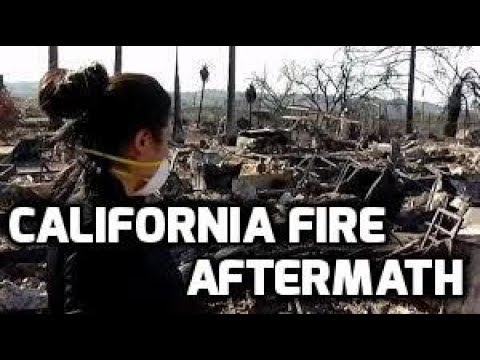 Aftermath of California Fires // Lilac Fire Vlog