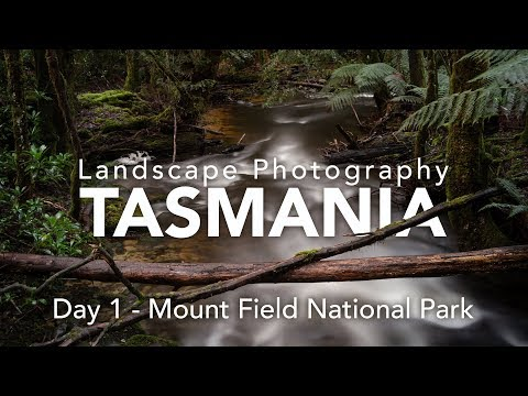 Hit The Ground Running - Landscape Photography in Tasmania - Day 1
