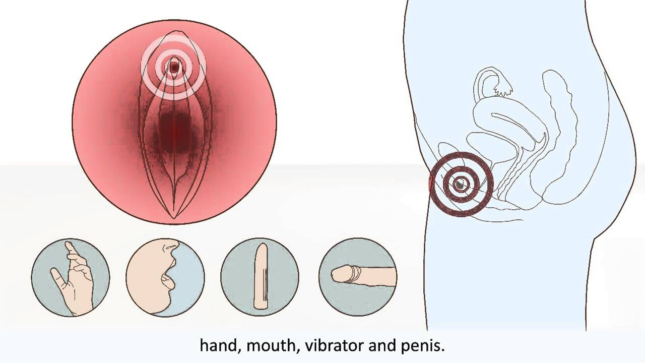 The Female Orgasm Explained - How Female Orgasm Works -3015