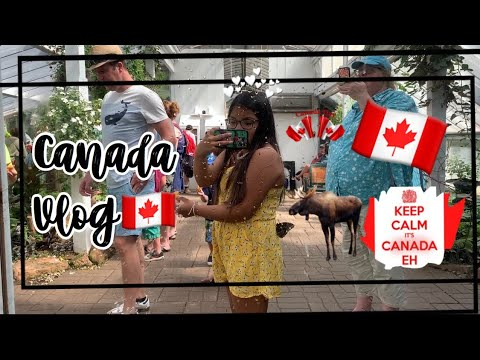 Canada Vlog🇨🇦( I should delete my channel😂🤦🏽‍♀️)