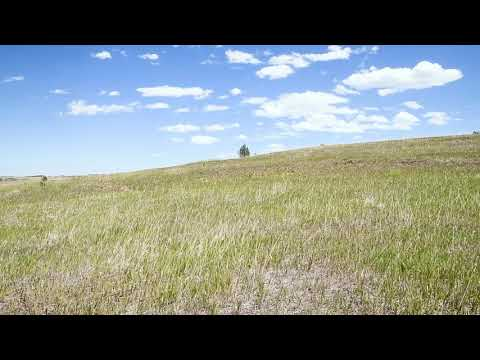 SOLD By Compass Land USA - 0.5 Acres – With Power! In Colorado City, Pueblo County CO