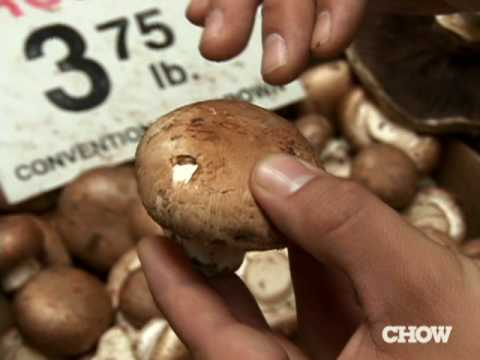 cremini or brown mushroom guidelines chow tip youtube rh youtube com