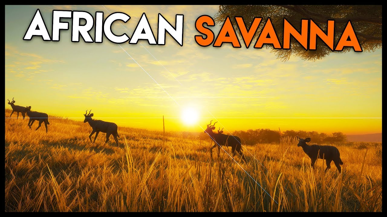 NEW MAP* Hunting in the AFRICA SAVANNA! (the Hunter: Call of The