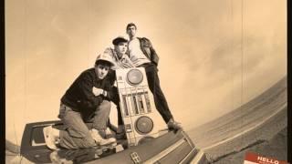 Beastie Boys - Electrify (Chillin' With Gary Bartz remix)