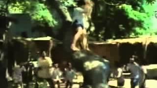 Hathi ghoda palki,Jai Kanhaiya lal ki song from Anokha Bandhan 1982