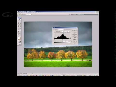 Photography Tips - Histograms Explained