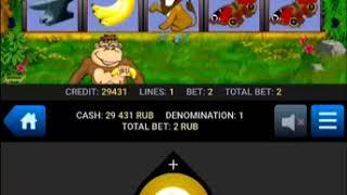 Baixar Crazy Monkey - беспроигрышная схема. 30000 руб в день!!!