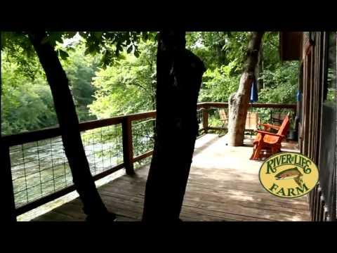 River of Life Farm -- The Treehouse Cabin