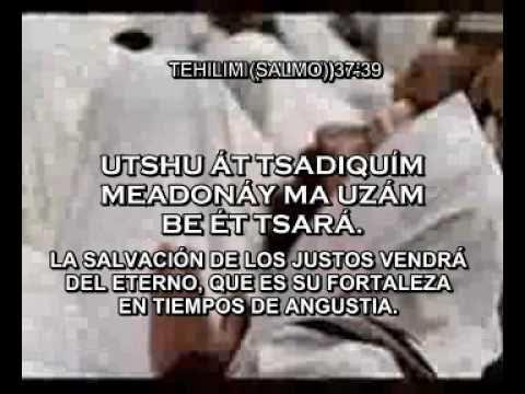 SALMOS CANTADOS EN HEBREO TRADUCCIÓN ESPAÑOL