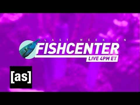 FishCenter Recap 5/22/17 | FishCenter | Adult Swim