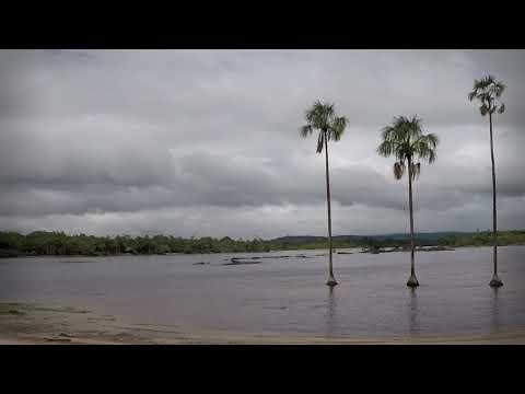 Travel in 1min: Angel Falls, Venezuela