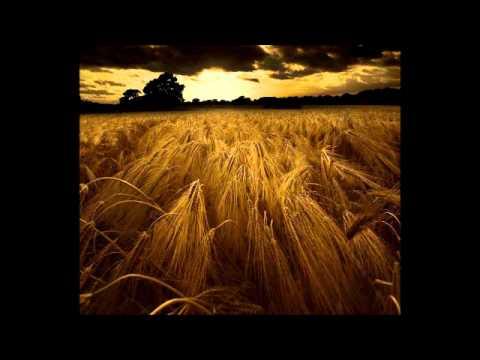 Frank Black - Johnny Barleycorn