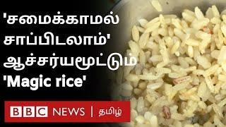 Magic Rice: அரிசியில் தண்ணீர் ஊற்றினால் சாதம் ரெடி; சமைக்க தேவையில்லை- ஆச்சரியப்படுத்தும் நெல் ரகம்
