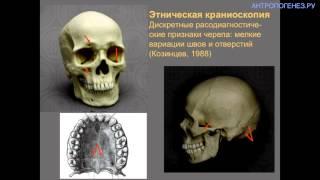 видео Классификация музеев. Профильно и типологическое деление музеев