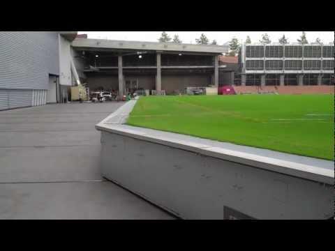 University Of Phoenix - Moving Field