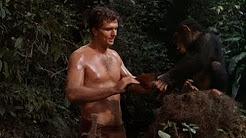 Tarzan - Ron Ely