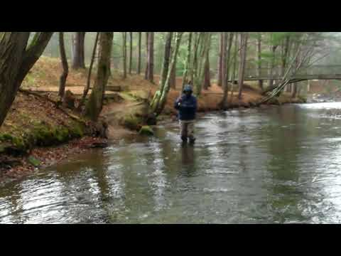 Swift River Fly Fish