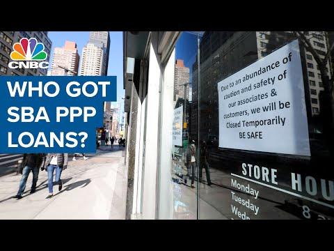 A breakdown of who actually got SBA PPP loans