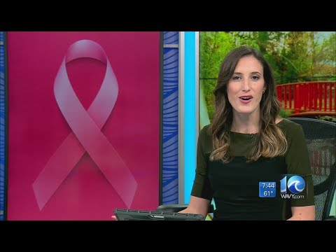 Making Strides Against Breast Cancer At Mt. Trashmore In Virginia Beach