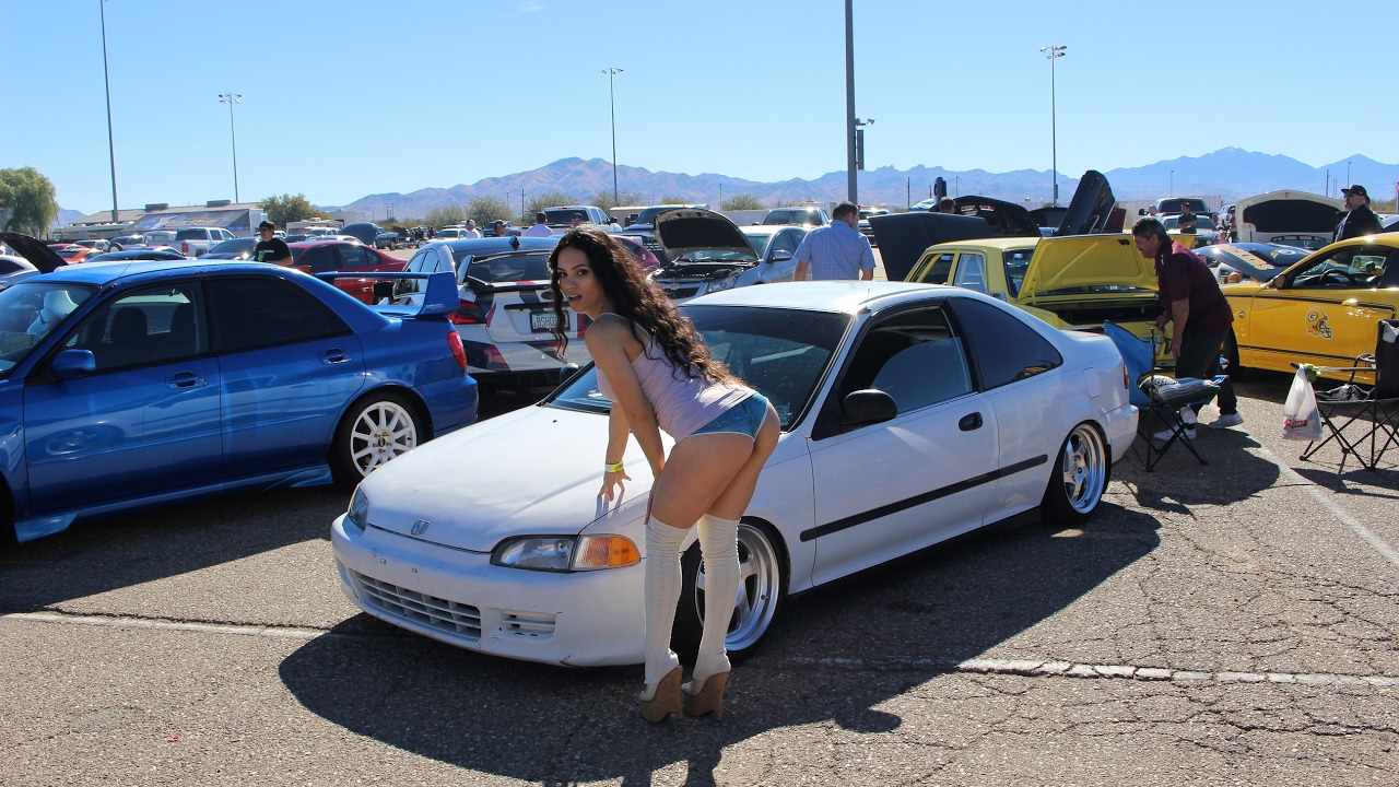 Auto Car Shows