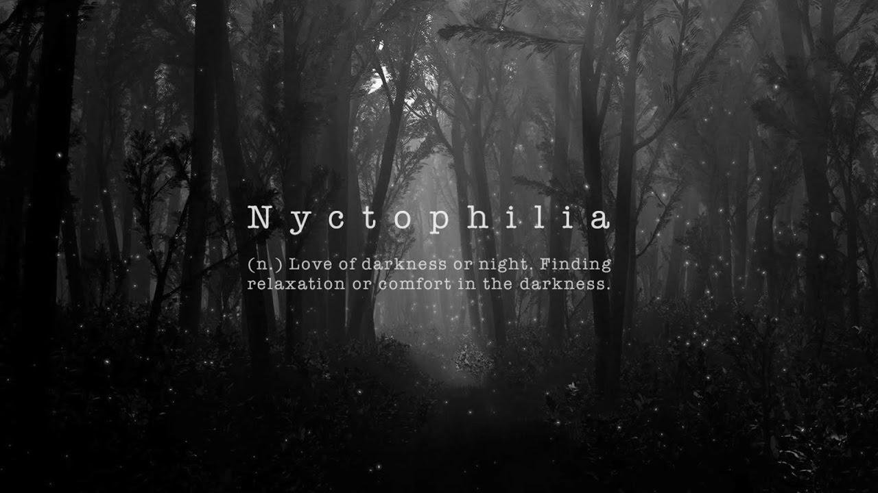 S N R Nyctophilia Video Youtube