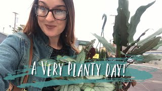 Mahoney's Trip & Plant Mail Unboxing ( The Plant Hall + Steve's Leaves)