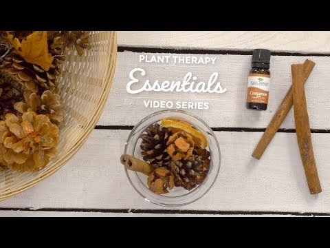 decorative-scented-pine-cones-holiday-diy-|-plant-therapy-essentials