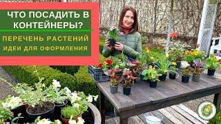 Что посадить в уличные горшки? Перечень растений и варианты создания цветочных композиций!