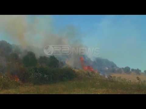 Ora News - Deri më tani në Shqipëri janë regjistruar 600 vatra zjarri