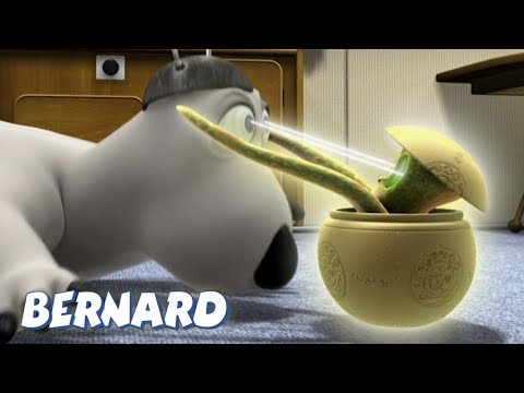 Bernard Bear   Close Encounters AND MORE   45 min Compilation   Cartoons for Children