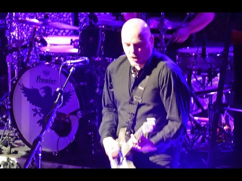 Golden Brown with Jet Black The Stranglers LIVE 3rd March 2015