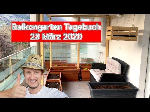Balkongarten Tagebuch 23.03.2020 🌞 Viele Neuigkeiten Sind Geplant