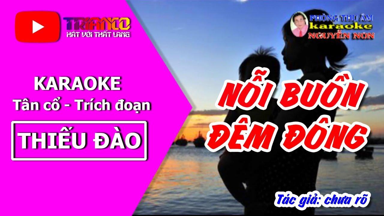 Karaoke Tân cổ NỖI BUỒN ĐÊM ĐÔNG - thiếu đào - Hong Michael