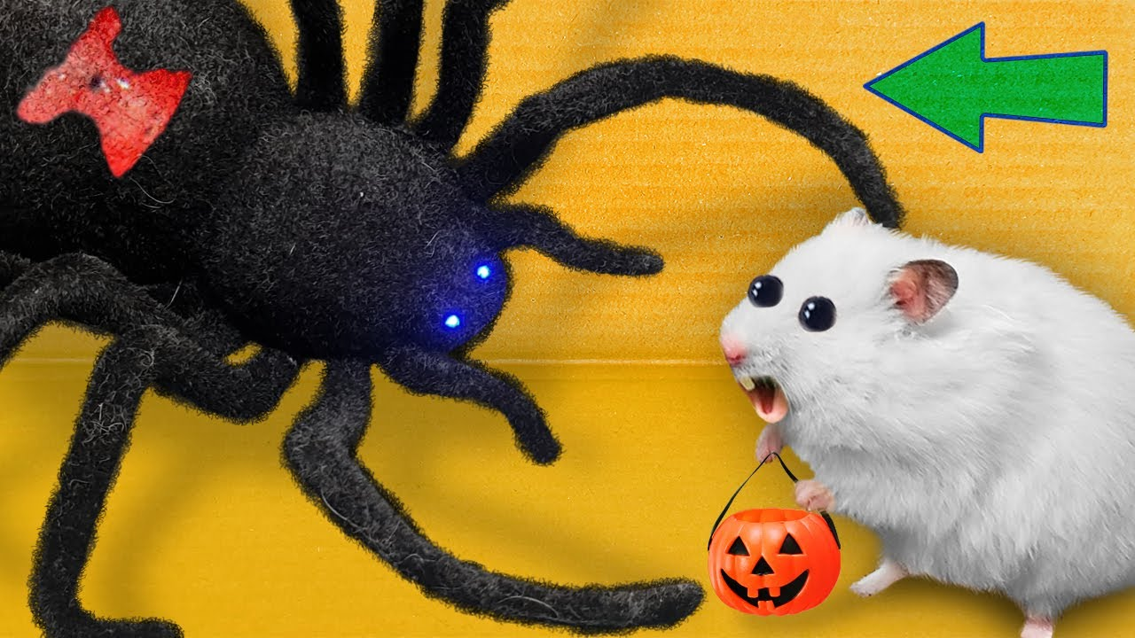 🎃 Halloween Hamster Maze with Traps [OBSTACLE COURSE]🔥 + BONUS