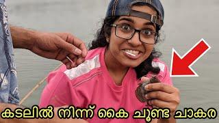 താലി കെട്ടാൻ പോണോ? ചൂണ്ട ഇടാൻ പോണോ?? | kerala fishing | varieties of fishes from the sea