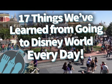 17 Life Lessons We've Learned From Going to Disney World EVERY DAY