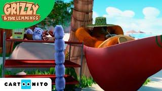 Grizzy e os Lemingues  World Tour  Boomerang