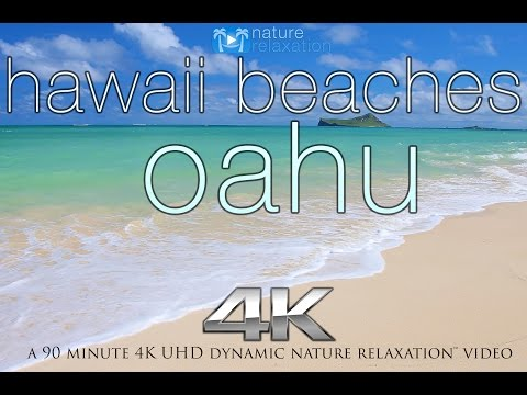 HAWAII BEACHES in 4K: Oahu  Nature Relaxation™ Dynamic 90 Min  U
