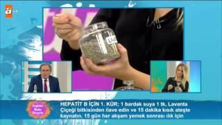 Prof. Dr. İbrahim Saraçoğlu'ndan Hepatit B için özel kür - atv