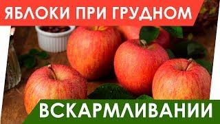 Яблоки при грудном вскармливании. Какие можно?