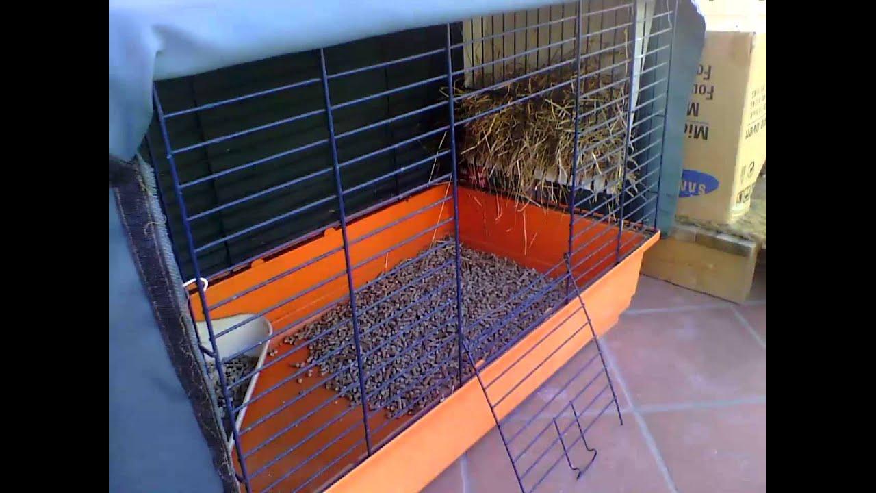 Conigli sistemazione sul balcone per l 39 autunno youtube for Casette per conigli fai da te