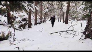 OFFICIAL Hunger Games: Winter Solstice Teaser Trailer