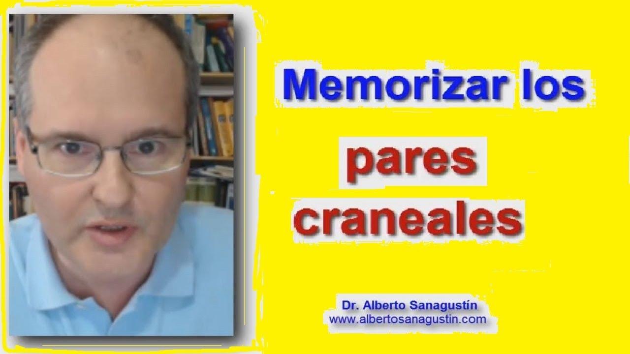Cómo MEMORIZAR los PARES CRANEALES #Neurología - YouTube