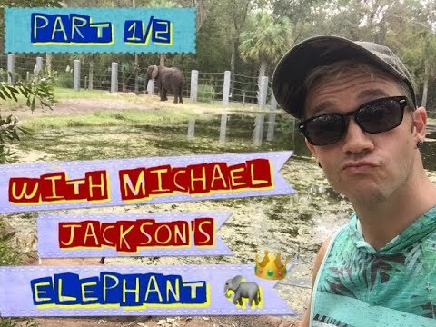JoEy's DaiLy Vlog 0026: At Jacksonville Zoo With Michael Jackson's Elephant!!! (part 1/2)