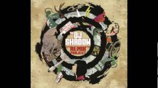 Dj Shadow : Building Steam With A Grain Of Salt (NiT GriT Mix)