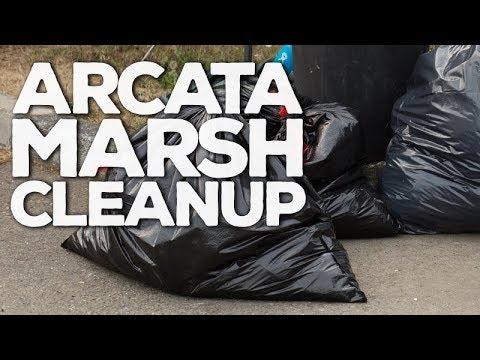Arcata Marsh Cleanup