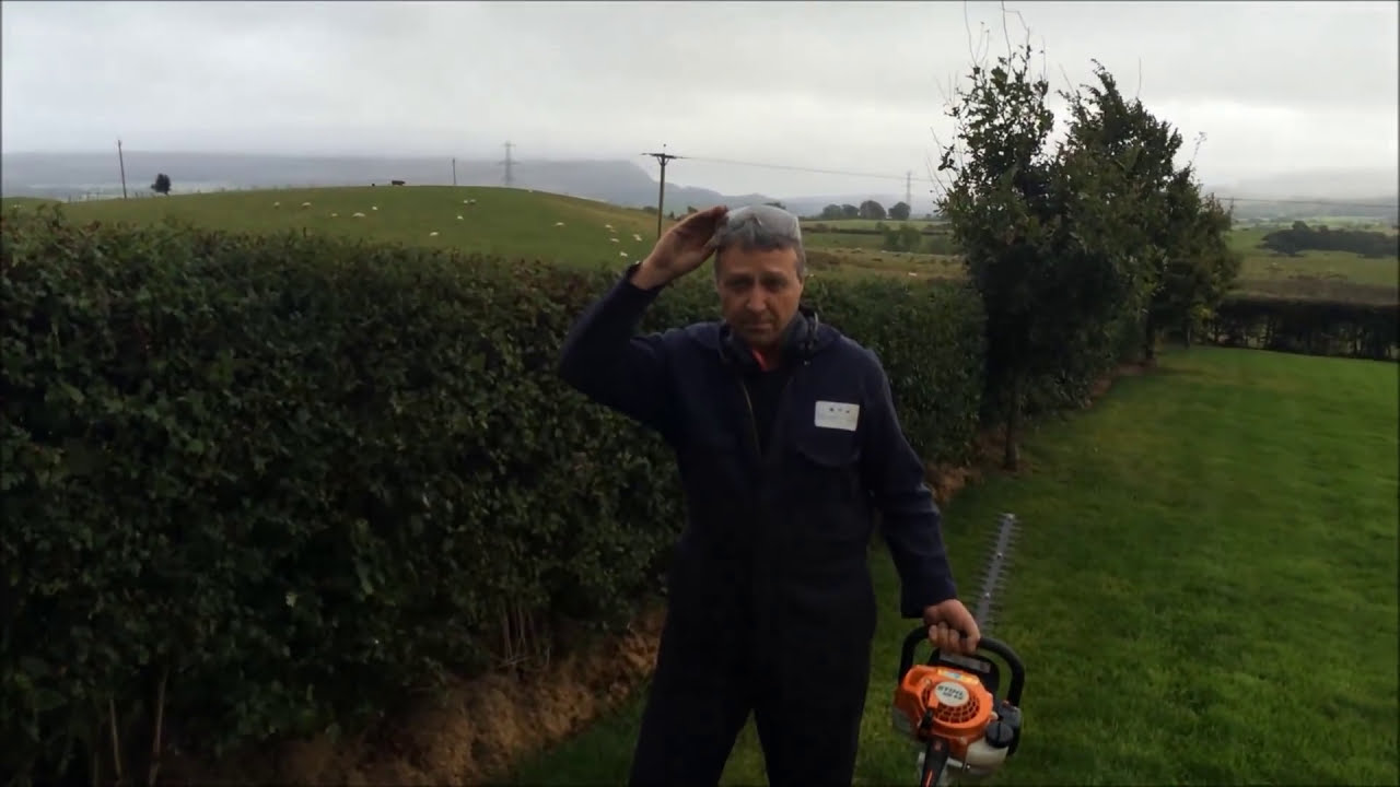 Stihl HS45 Hedge Trimmer Demonstration - Double Sided Cutting Blade